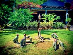 Kuching, Sarawak https://goo.gl/maps/Am7fUsj6yi42  #travel #holiday #river #Asian #Malaysia #Sarawak #Kuching #travelMalaysia #holidayMalaysia #旅行 #度假 #亚洲 #马来西亚 #沙拉越 #古晋 #trip #马来西亚旅行 #traveling #马来西亚度假 #buildings #gardan #公园 #cat #猫 #Kuchingwaterfront #g