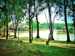 40000 Shah Alam, Selangor https://goo.gl/maps/5V4mzkG6Pqy  #travel #holiday #Asian #Malaysia #Selangor #shahalam #travelMalaysia #holidayMalaysia #旅行 #度假 #亚洲 #马来西亚 #雪兰莪 #沙啊南 #trip #马来西亚旅行 #traveling #马来西亚度假 #tree #Lake #湖 #Park #公园 #Taman #树木