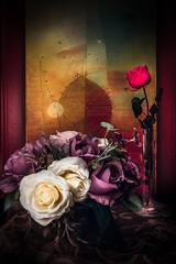Eternellement Rose