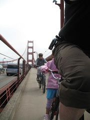 Headless  Panda on the Golden Gate Bridge