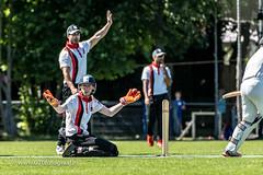 070fotograaf_20180708_Cricket HCC1 - HBS 1_FVDL_Cricket_2396.jpg
