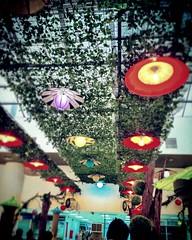 Wisma Saberkas Management Corporation Wisma Saberkas, 3, Jalan Tun Abang Haji Openg, 93150 Kuching, Sarawak 082-421 227 https://goo.gl/maps/9ttsNjJfiV12  #travel #holiday #Asian #Malaysia #Sarawak #Kuching #travelMalaysia #holidayMalaysia #旅行 #度假 #亚洲 #马来西