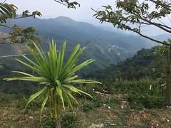 Super Aussicht kurz vor dem Gipfel