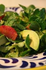 Mache, Avocado, and Blood Orange Salad