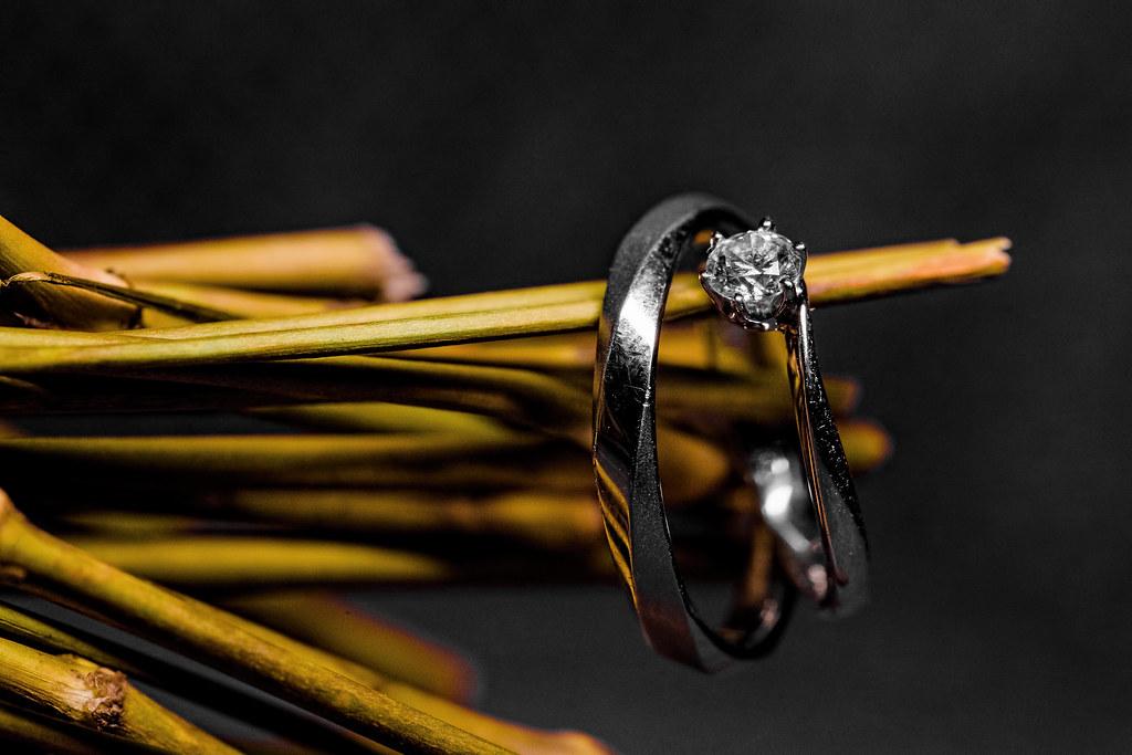 湘金廳,新竹彭園,彭園婚攝,新竹彭園婚攝,婚攝卡樂,Rich&Rain60