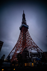 "[Wtulens] tokyo tower • <a style=""font-size:0.8em;"" href=""http://www.flickr.com/photos/67664500@N07/42967554841/"" target=""_blank"">View on Flickr</a>"