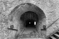 Zamek w Starej Ľubovni - Słowacja