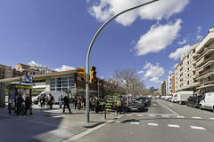 Mercado-Torrent-Gornal-pajaritos