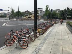 Mo-Bikes zum Ausleihen