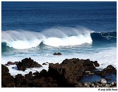 Notícia triste no mundo do meio ambiente: oceanos estão perdendo oxigénio