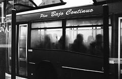 Leica31_8p.jpg