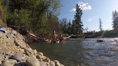 Kaltes Bad im Fluss