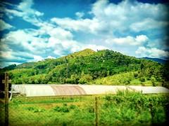 Semenyih, Selangor https://goo.gl/maps/7xVSV7BAAJq  #travel #holiday #Asian #Malaysia #broga #travelMalaysia #holidayMalaysia #旅行 #度假 #亚洲 #马来西亚 #森美兰 #trip #马来西亚旅行 #traveling #马来西亚度假 #countryside #mountain #kampung #乡村 #nature #大自然 #bukit