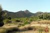 Barranc de Ràgil-Riu Verd-Torroselles – Tibi-2