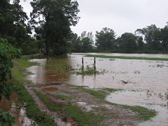 Kollibacchalu Dam -Malenadu Heavy Rain Effects Photography By Chinmaya M.Rao   (111)