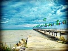 Lover's Bridge Tanjung Sepat 情人桥 42800 Tanjung Sepat,, Lorong Lautan Samudera 9/1, Bandar Puncak Alam, 45010 Kuala Selangor, Selangor https://goo.gl/maps/5zbDuTJvXAK2  #travel #holiday #Asian #Malaysia #Selangor #Tanjungsepat #travelMalaysia #holidayMalay