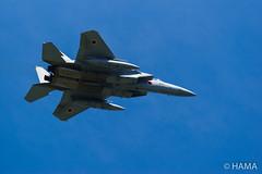 JASDF 306SQ F-15J/DJ - 2