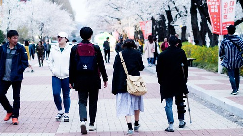 Going Cherry-Blossom Viewing_MDY_180408_9