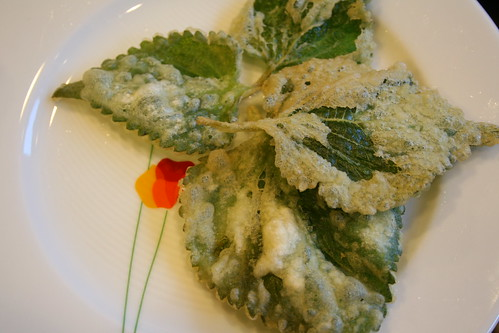 tempura perilla leaves