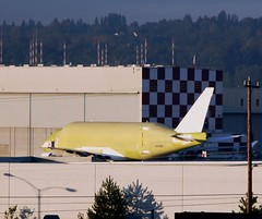 Large Cargo Freighter at Boeing Field