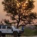 Kruger Park May 2018