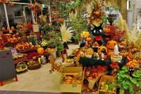 Donguri Garden Halloween | Flickr - Photo Sharing!
