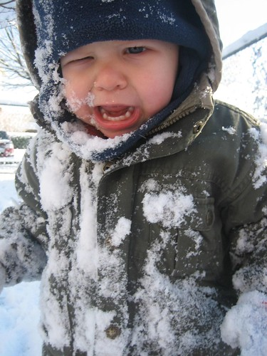 Snow ball in the face