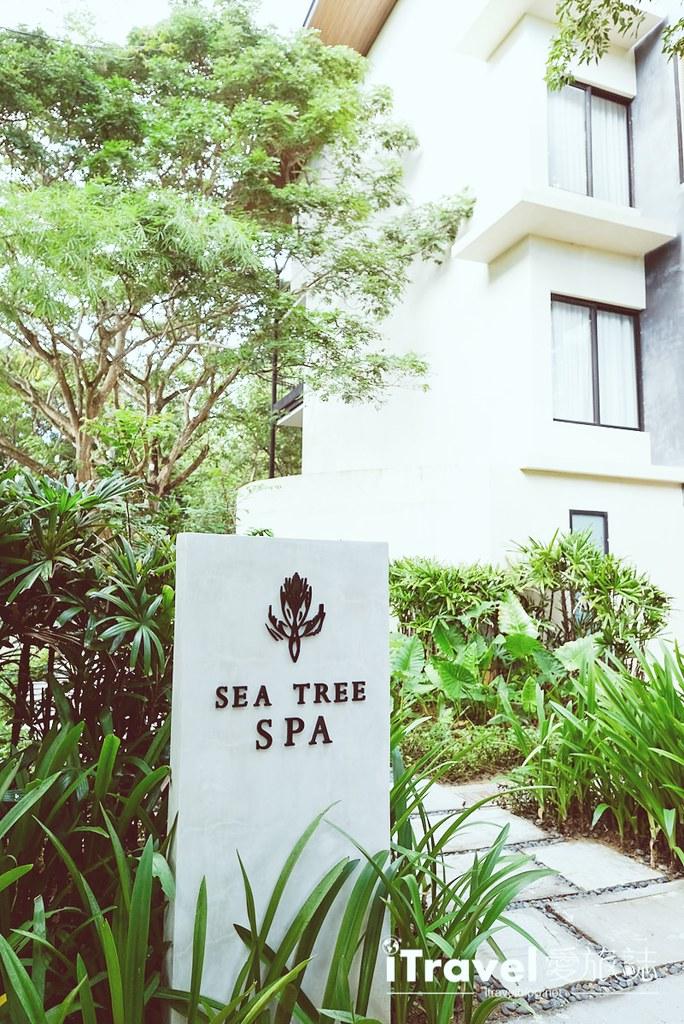 《菲律宾自由行》5天4夜薄荷岛行程攻略:享受纯净海洋生态