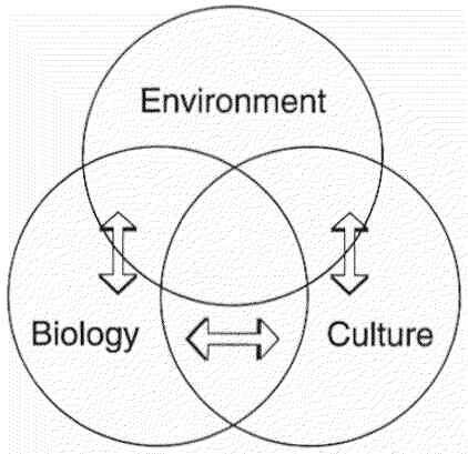 Figure 1. Holistic perspective of the environment (change