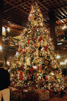 Hotel Del Coronado Christmas Tree - Sharing