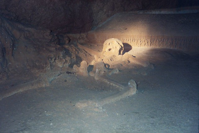 Mayan remains at ATM cave in Belize