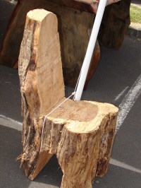 tree stump chair | Flickr - Photo Sharing!