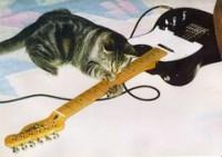 ¡Música, Maestro...!
