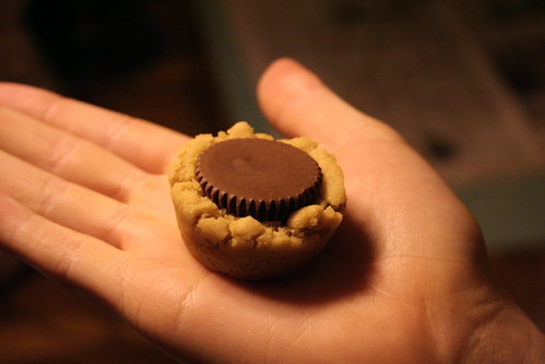 delicious chocolate peanut butter cookie