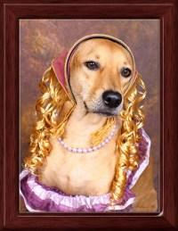 My dog dressed as Goldilocks | Flickr - Photo Sharing!