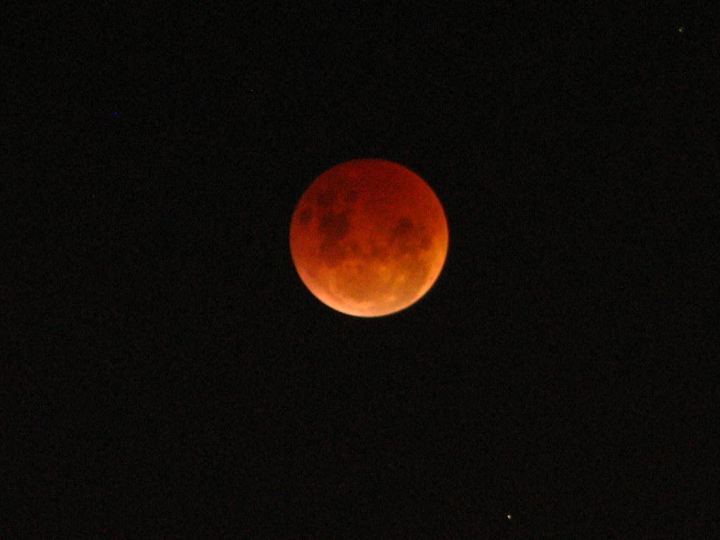 Eclipses Tides By Elizabeth Sloane