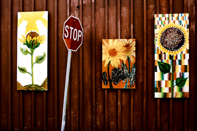 Stop the Sunflowers