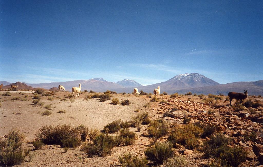 Toconao Valle de Jerez Chile 1