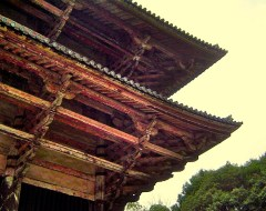 Kyoto - Roof