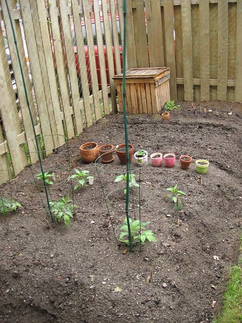 Vegetable Garden Overview