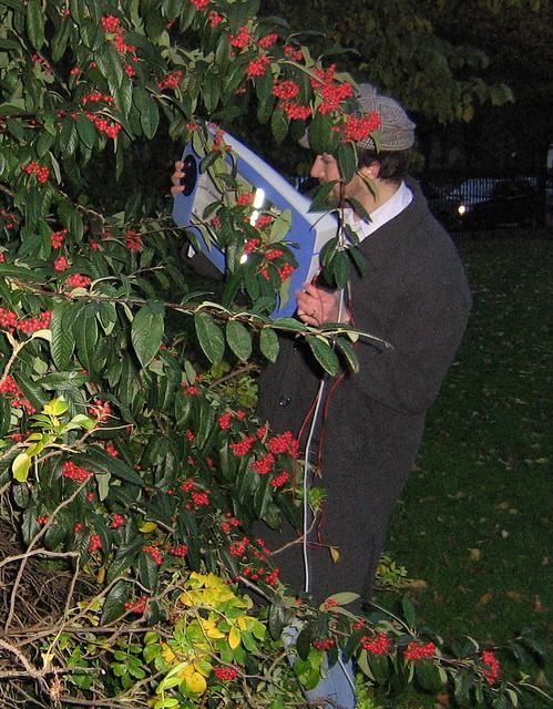 scanning berries, herbert park, dublin