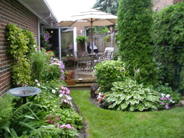 yard garden in july 05
