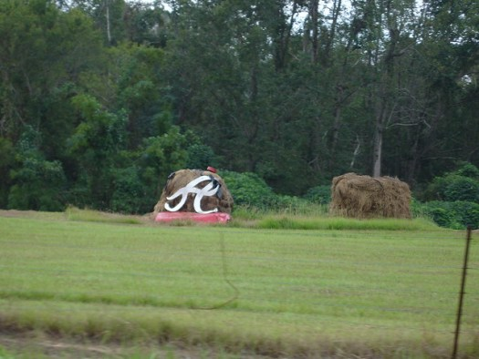 Roll Tide - Jim Bird's Hay Creations, Forkland AL