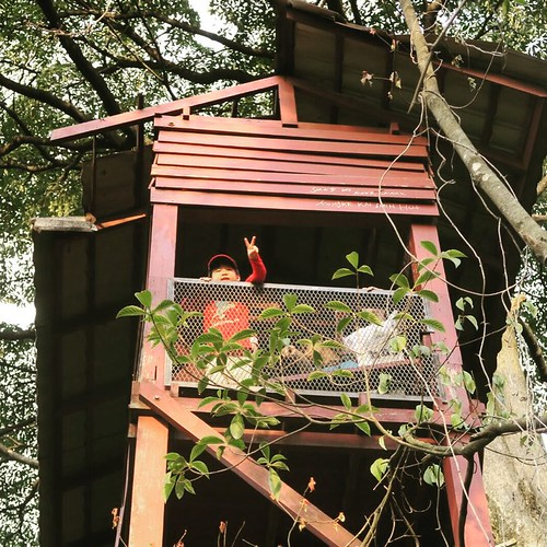 Grandpa Smurf at the lookout tower in watch duty in case Gargamel finds the smurf village.