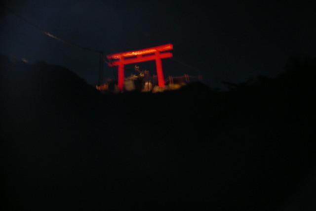 tori at night