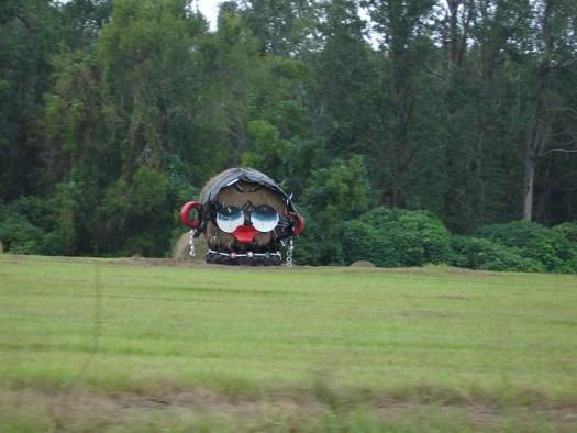 Betty Boop at Jim Bird's Hay Creations, Forkland AL