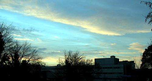 IMG_5001 Campus at dawn