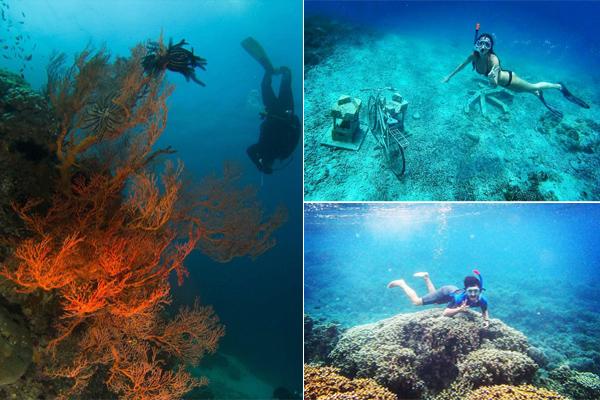 Underwater Gili Lombok