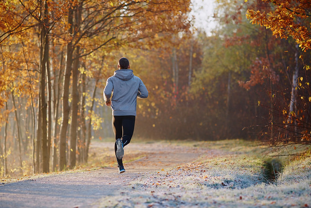 consejos para mantenerte activo