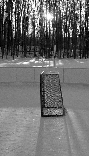 the net on the rink - version 2 by gnawledge wurker